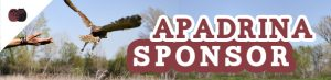 banner_apadrina