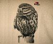 camiseta_mochuelo