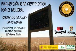 Inaguración ruta ornitológica en Pinto