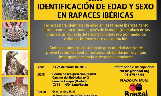 CURSO DE IDENTIFICACIÓN DE EDAD Y SEXO EN RAPACES IBÉRICAS