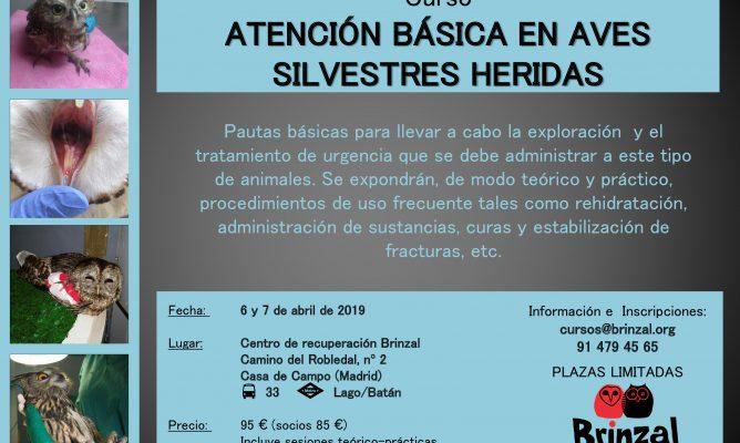 Curso ATENCIÓN BÁSICA EN AVES SILVESTRES HERIDAS