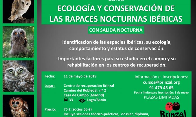 Curso ECOLOGÍA Y CONSERVACIÓN DE LAS RAPACES NOCTURNAS IBÉRICAS